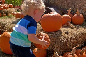 Kid-Friendly Austin – The Fall Festival at Barton Hill Farms