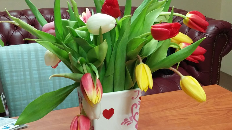 Valentine's Day Tulips from ProFlowers